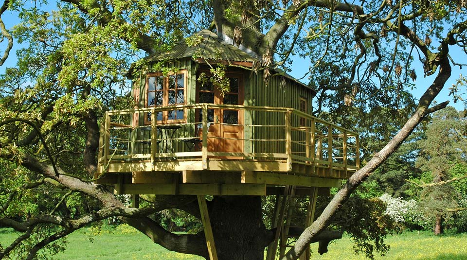 Custom built adult treehouse in mature Irish Oak